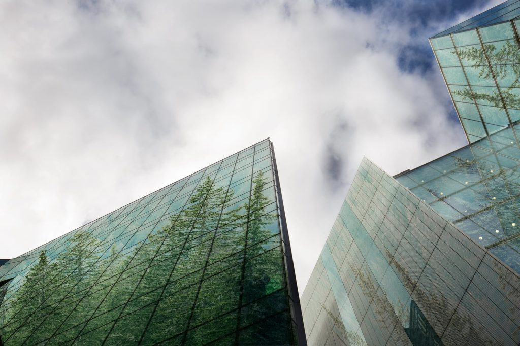 Building with Tree Reflection