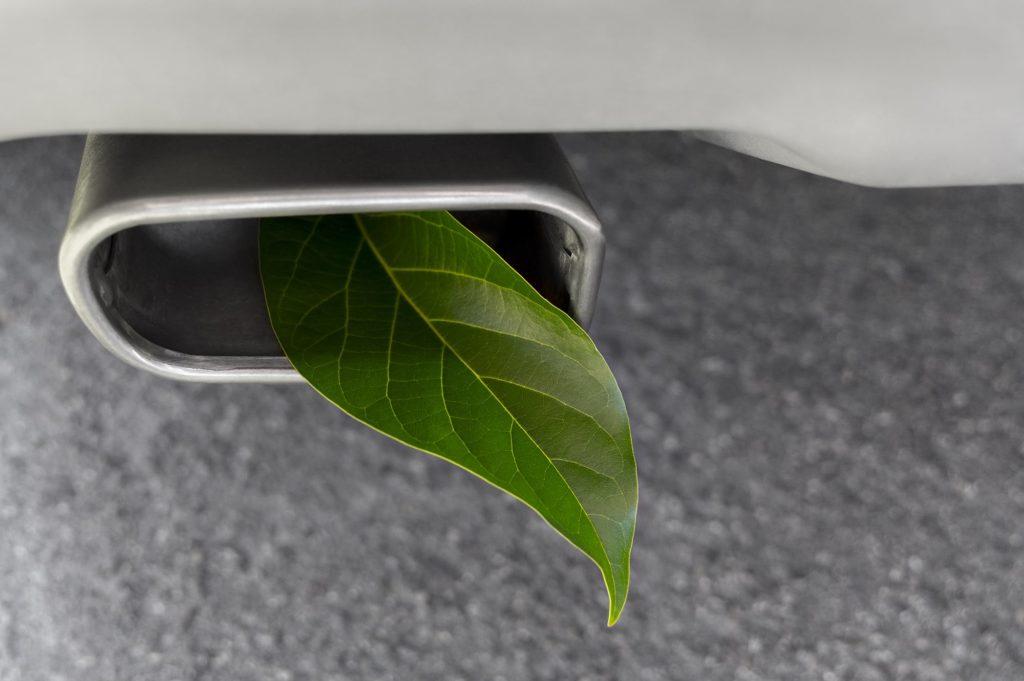 Leaf in Emissions