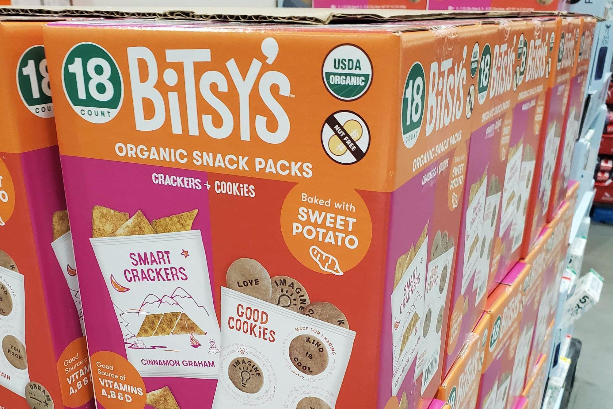 bitsys-success